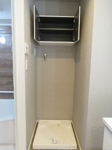 ライオンズマンション駒沢 洗濯機置場