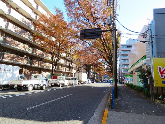 いづみハイツ芦花公園 前面道路