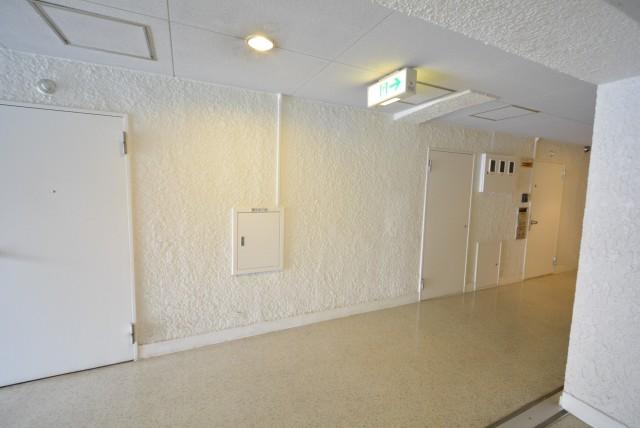 ハイツ赤坂505 玄関