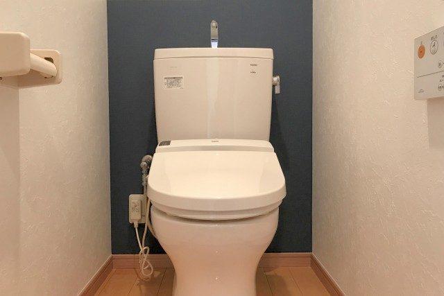 都立大コーポラス (50)トイレ
