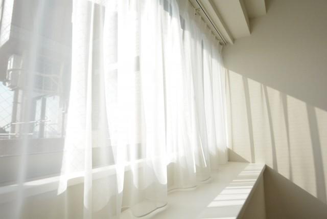 洋室約5.1帖窓