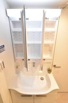 都立大第2コーポラス 洗面室