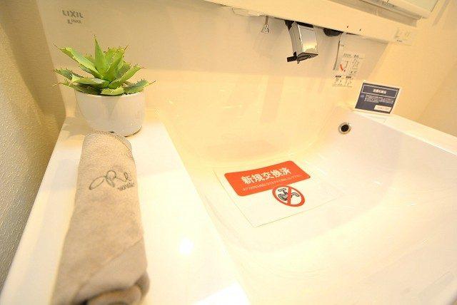 柿の木坂サニーハイツ 洗面