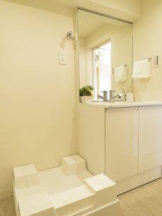 戸山ハイツ 洗面化粧台