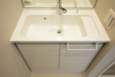 藤和護国寺コープ 洗面室