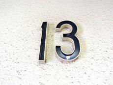 ライオンズマンション大森第3 13F