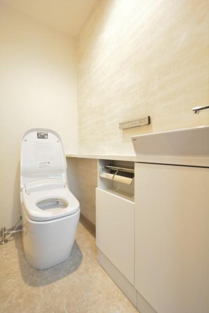 カルム桜新町パティオ トイレ
