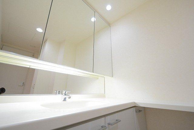 ニュートンプレイス 洗面室