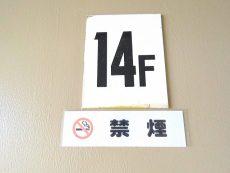 大森永谷マンション 14F