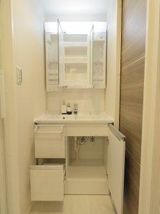 都立大コーポラス 洗面化粧台