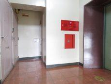 トーエイ高井戸 共用廊下