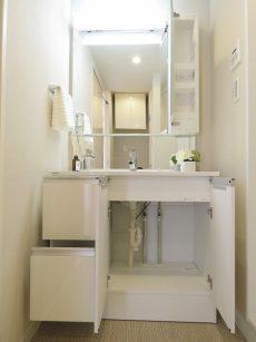 トーエイ高井戸 洗面化粧台