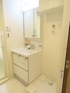 秀和等々力レジデンス 洗面化粧台と洗濯機置場