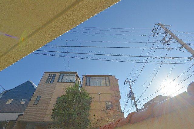 桜丘フラワーマンション 庭