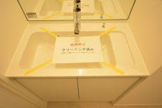パイロットハウス北新宿 (57)洗面室