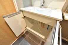 上高井戸ヒミコマンション 洗面室