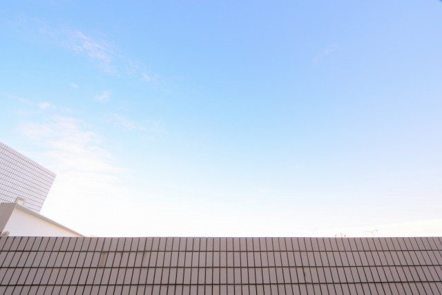 エクセルシオール碑文谷 洋室1