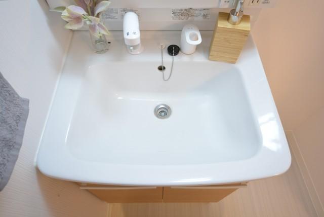 秀和椎名町レジデンス 洗面室
