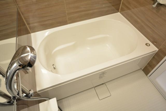 メゾンドール本郷 浴室