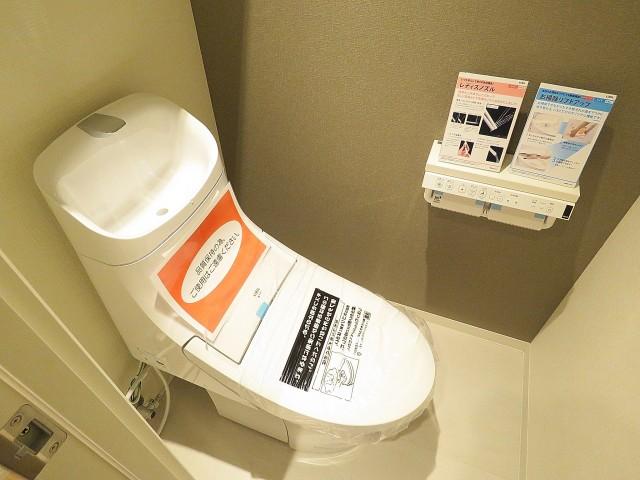 五反田サニーフラット トイレ