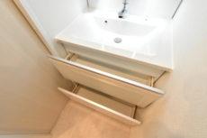 目白ガーデニア 洗面室