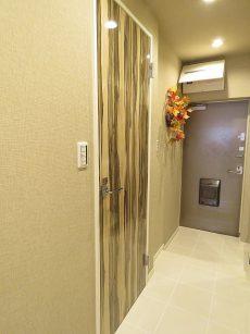 グリーンヒル新宿 洗面室扉