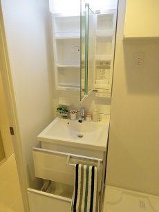 グリーンヒル新宿 洗面化粧台