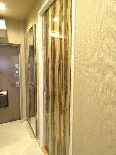 グリーンヒル新宿 洋室約6.3帖扉