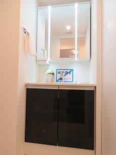 目黒グリーンコープ 洗面化粧台