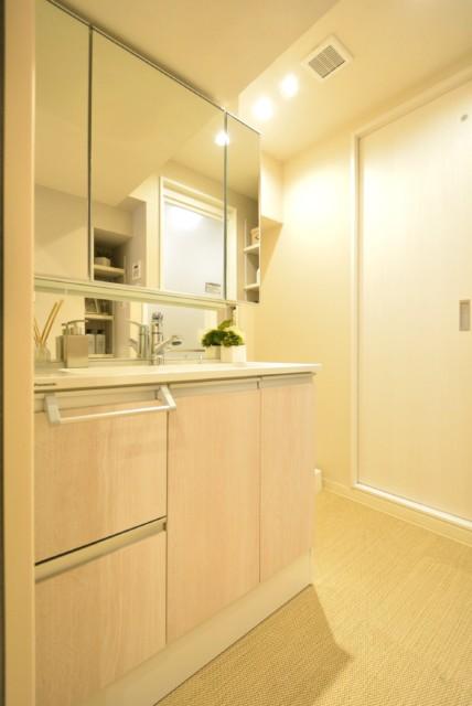 マンション第二明大前 洗面室