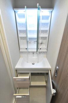 ライオンズマンション南平台 洗面室