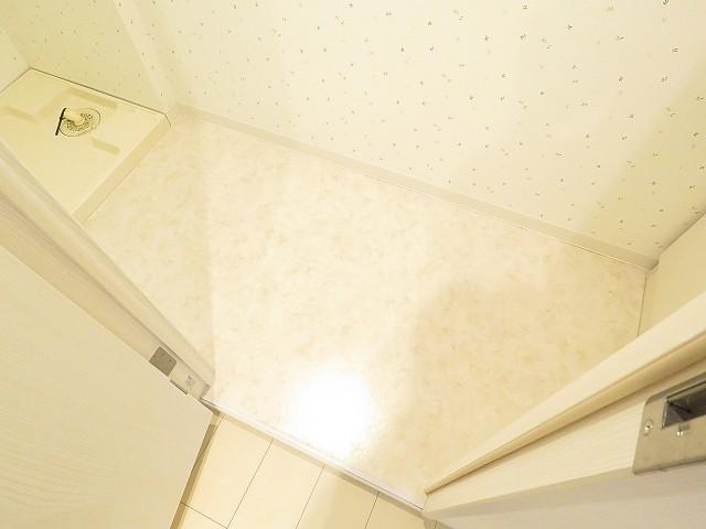 五反田サニーフラット 洗面室