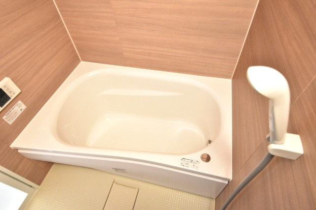 メゾンドール高田馬場 浴室