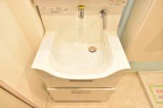 メゾンドール高田馬場 洗面室