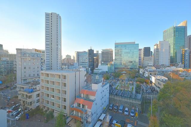 青山ザ・タワー (85)バルコニー