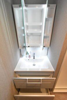 目白台コーポ 洗面室