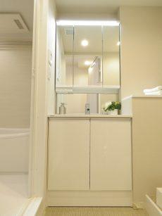 東山コーポラス 洗面化粧台