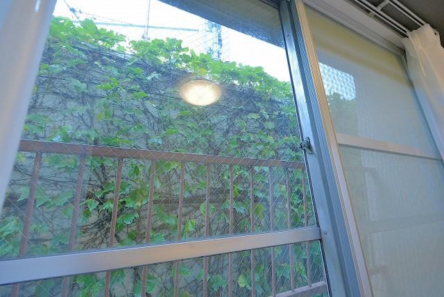 中野ハイネスコーポ 洋室5.0