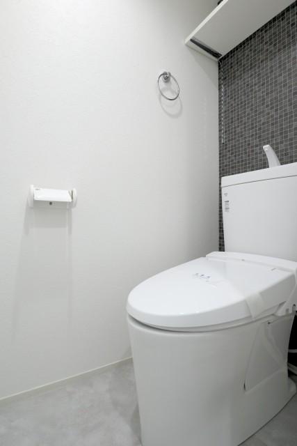 ライオンズマンション大森 トイレ