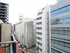 グランドメゾン新宿東 眺望