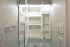 トーエイ高井戸 洗面室