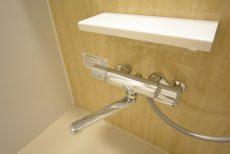 グリーンキャピタル広尾 浴室
