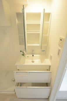 朝日プラザ東池袋 洗面室