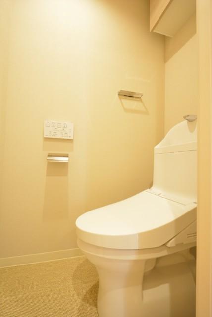 マンション第二恵比須苑 トイレ