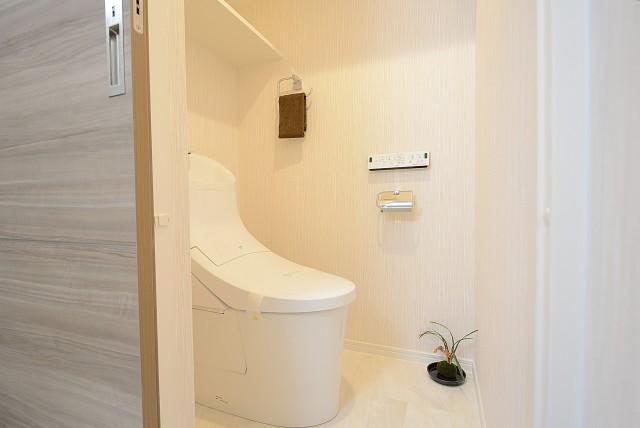 グランドメゾン野沢 トイレ
