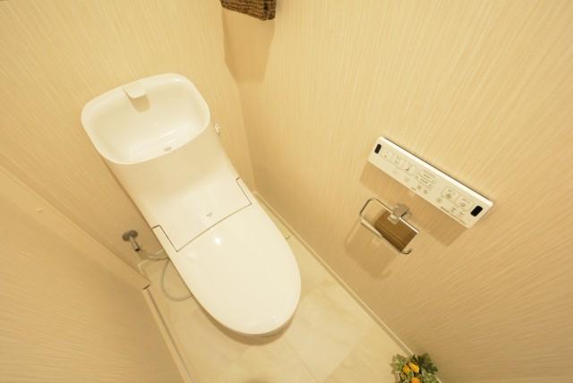 ライオンズマンション三軒茶屋第3 トイレ
