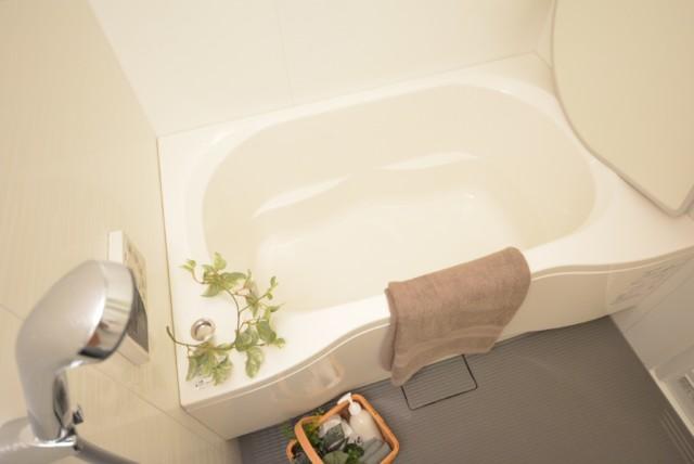 秀和恵比寿レジデンス 浴室