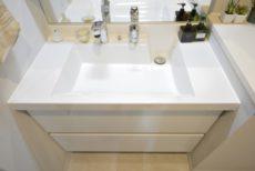 リシェ広尾 洗面室