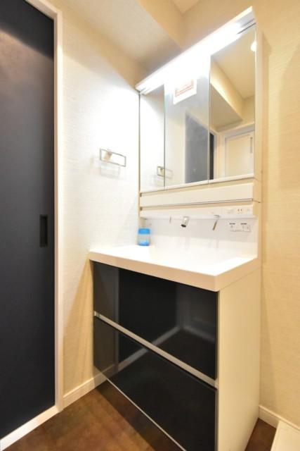 秀和南大井レジデンス 洗面室