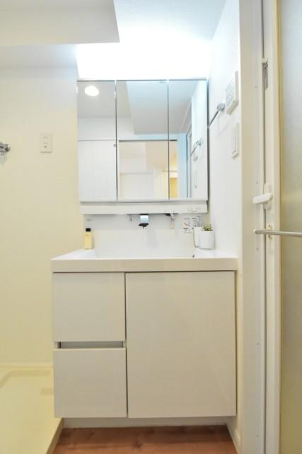 マンションヴィップ目黒 洗面室